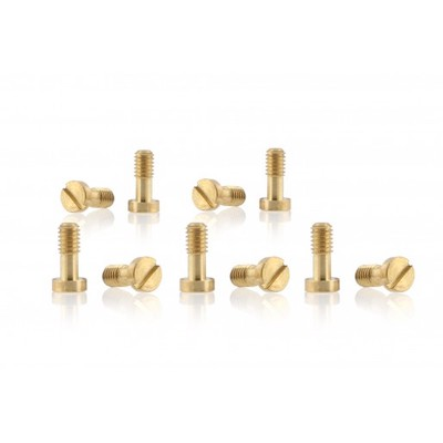 SICH89 Slot.it Metric Screws 2.5 x 6mm,Brass Carrera Chassis x10